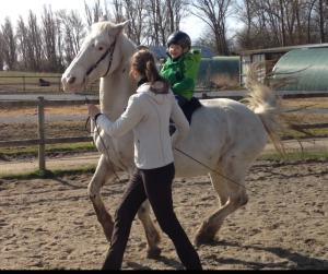 Motivation for træning kan komme fra uventede kanter. Min datter er helt pjattet med gangarten galop. Og når man ikke har råd til at købe en pony til sin datter, så er det praktisk, at hun kan få en tur i galop på den halvstore hest, mens man kan gå ved siden af og sørge for, sikkerheden er i orden